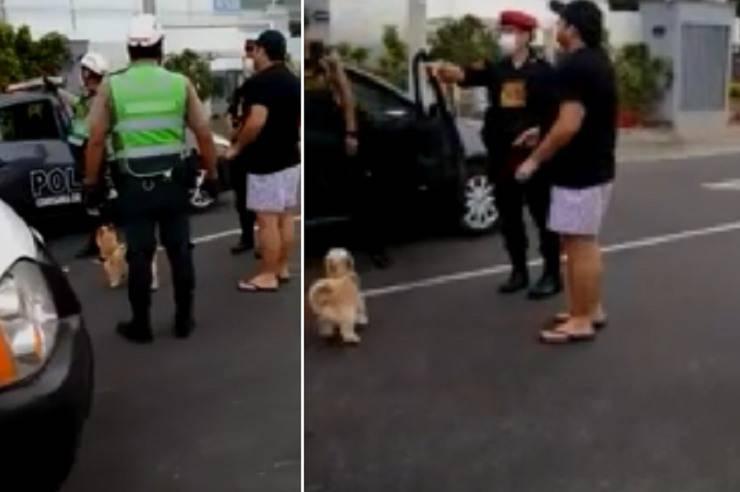uomo arrestato fuori il cane