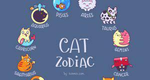 carattere gatto oroscopo segno