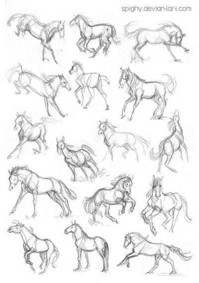 Come Disegnare Un Cavallo Dal Piu Semplice Al Realistico