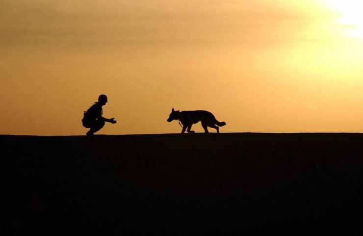 Fotografia romantica tra cane e padrone (Foto Pixabay)