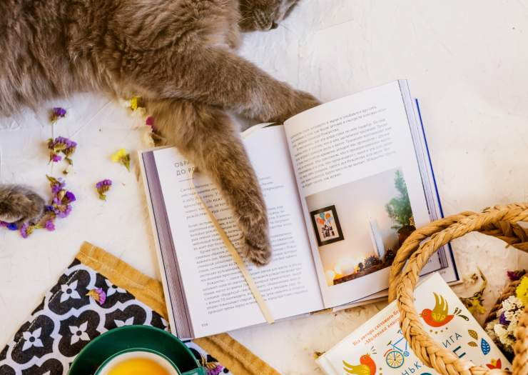 libri fantasy con animali