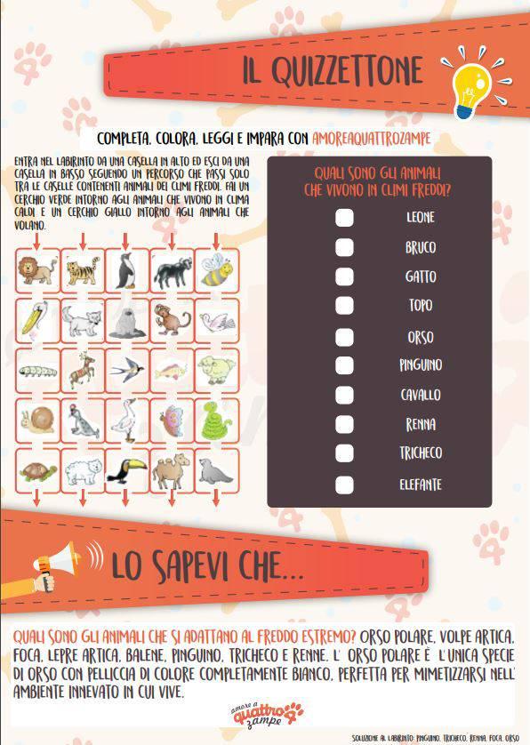 schede animali per bambini