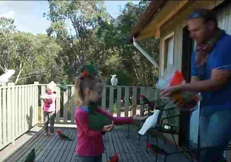 Bambini e volatili (foto video)