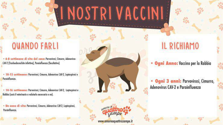 iconografica vaccinazioni