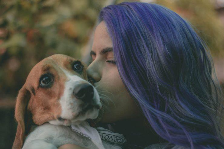 Vivere con un cane