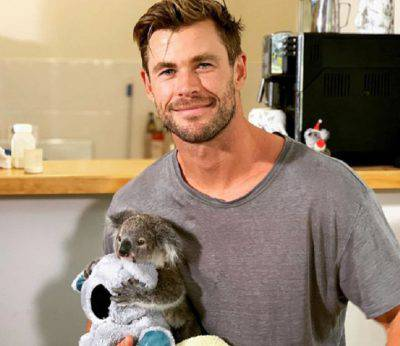 Chris Hemsworth koala