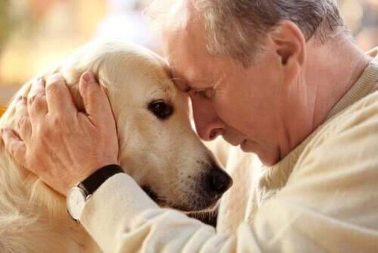 coronavirus anziani affidare animali
