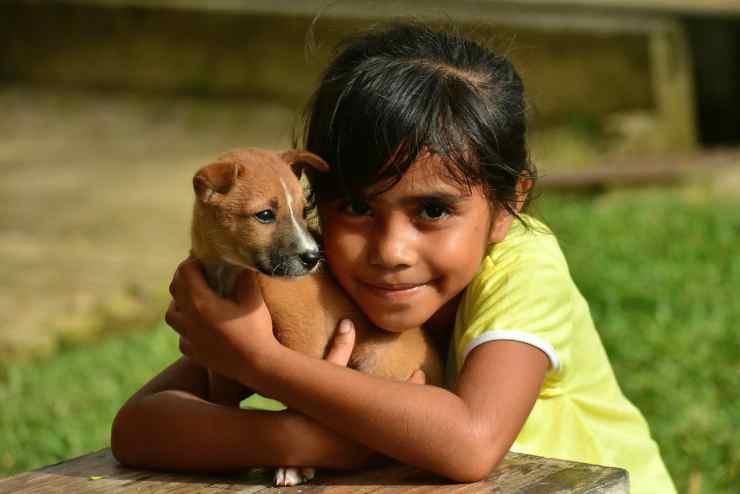 Il cucciolo e la bambina (Foto Pixabay)