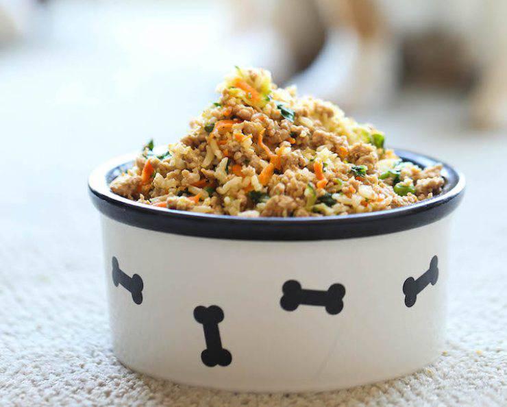 ricetta cani cibo
