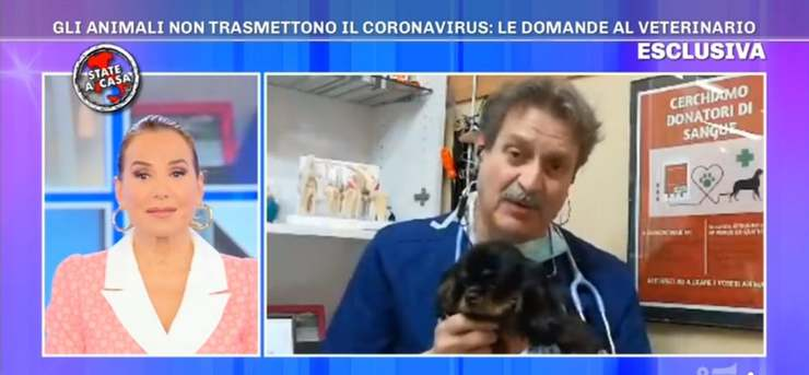 intervista al veterinario