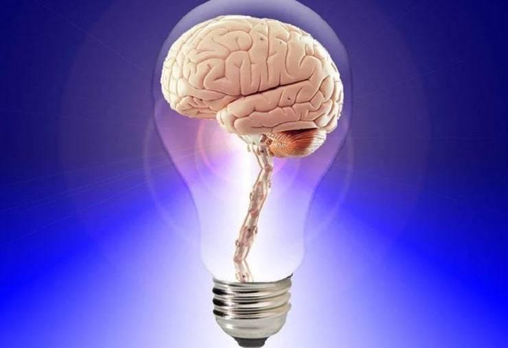 cervello lampadina