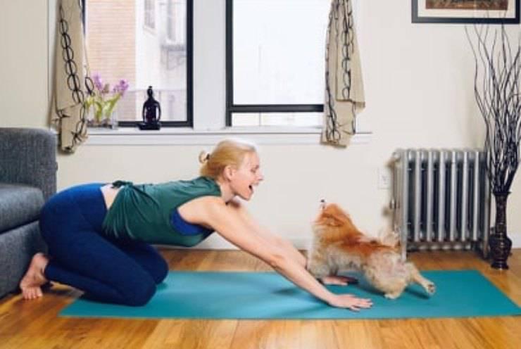 Yoga con il cane