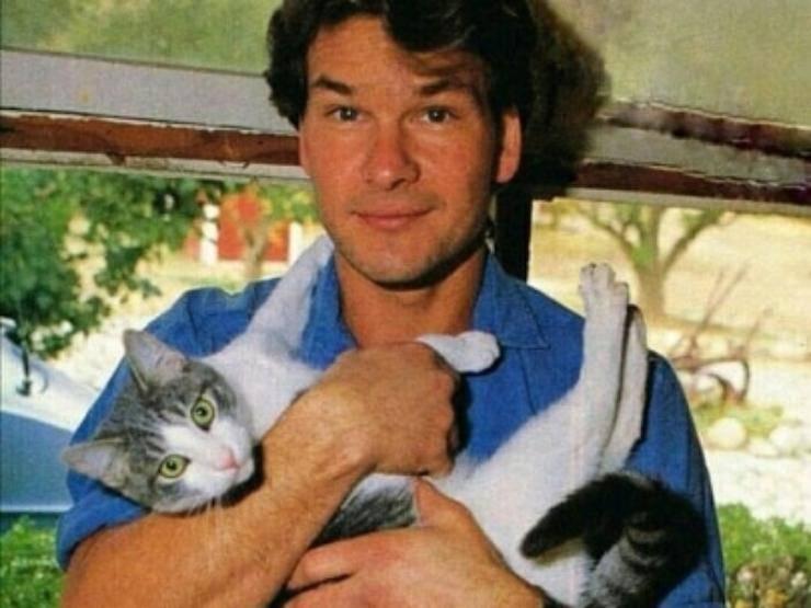 Attori che amano i gatti