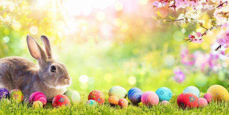 Il coniglio come simbolo di Pasqua