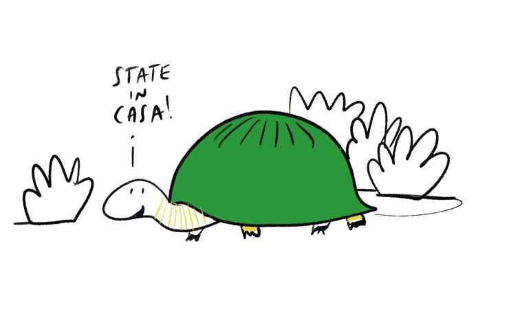 La tartaruga raccomanda di stare a casa (Foto Marco Milanesi)