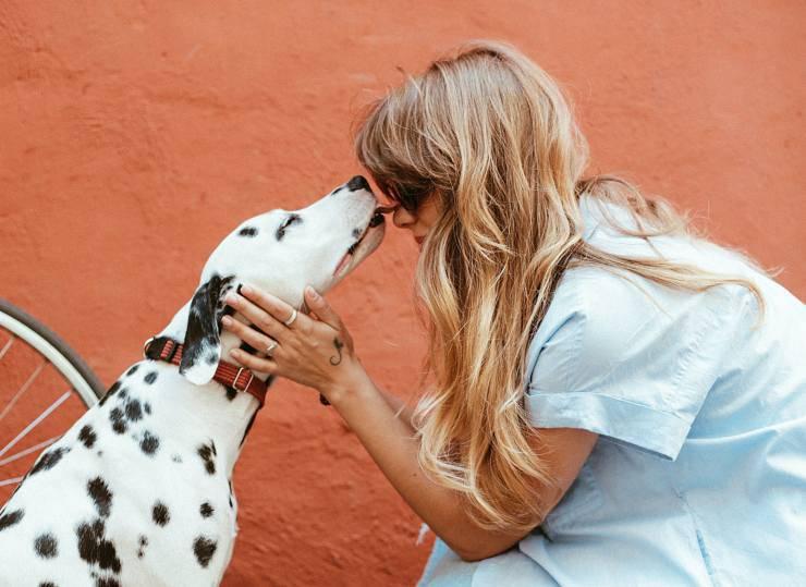 Razze canine più affettuose