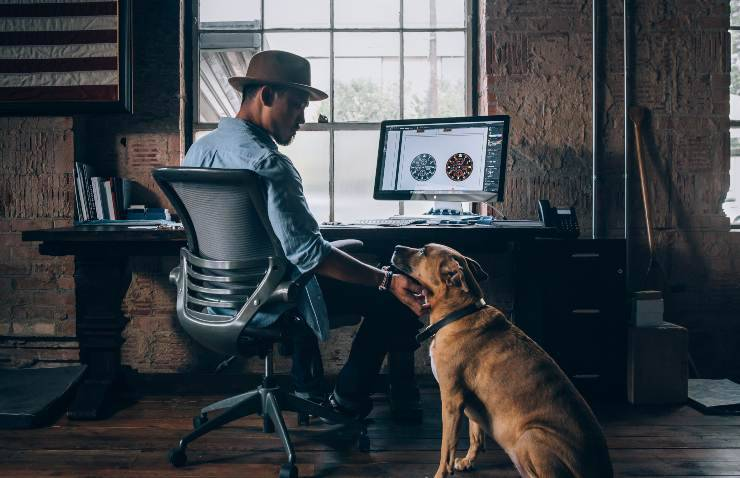 Smart working con il cane