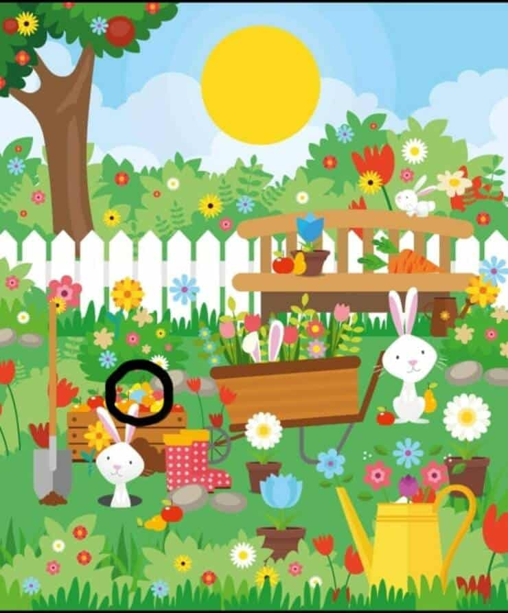 soluzione test visivo Pasqua