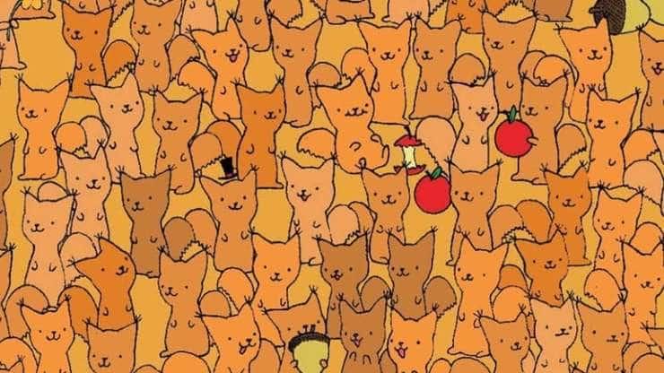 Test visivo trova il topo tra gli scoiattoli
