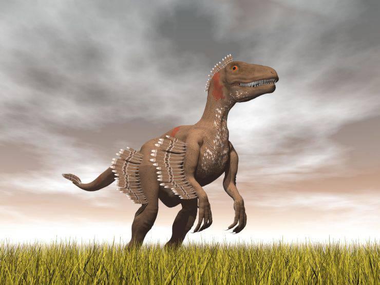 dinosauri velocirattor
