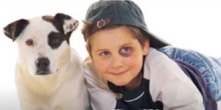 cani somiglianti