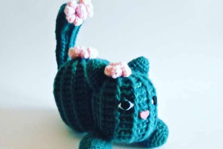 Il gatto (foto Facebook)