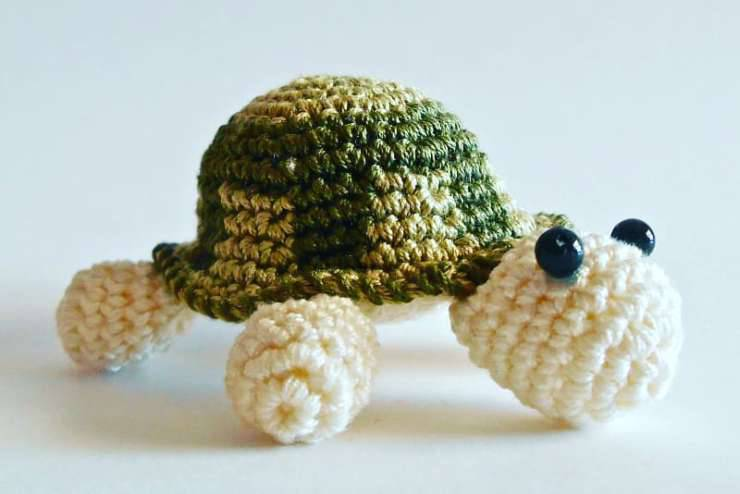 la tartaruga (Foto Facebook)