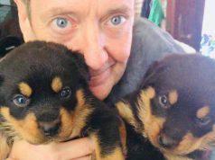 John Peter Sloan cani