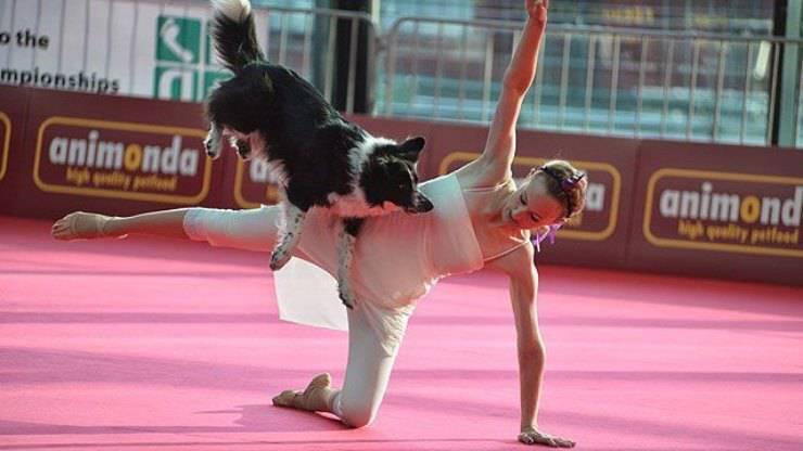 Dog dance ballare con il cane