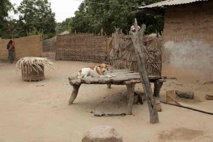 L'immagine della povertà (Foto Adobestock)