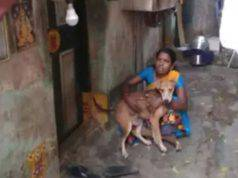 Coronavirus donna nutrire cani