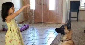 la bambina e il cane giocano (Foto Instagram)