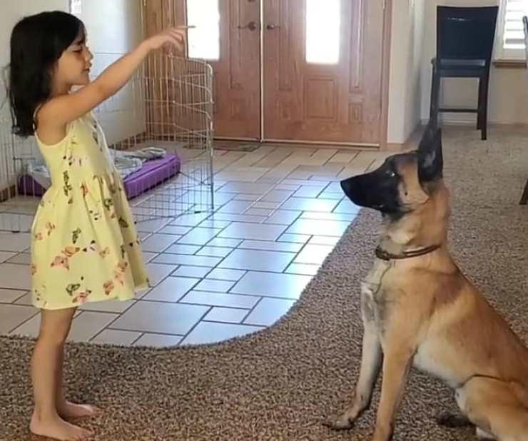 Il cane e la bambina (Foto Instagram)