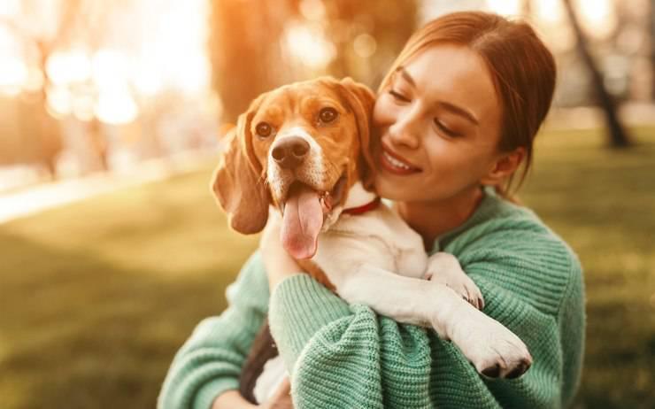 Probiotici per il cane: utili per la salute della sua pelle?