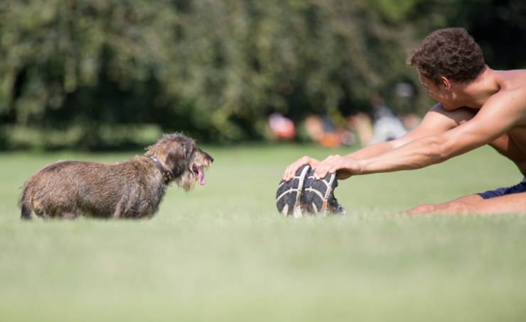 Giocare col cane