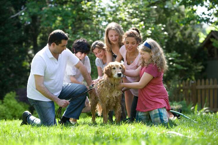 Prendere un cucciolo in affido