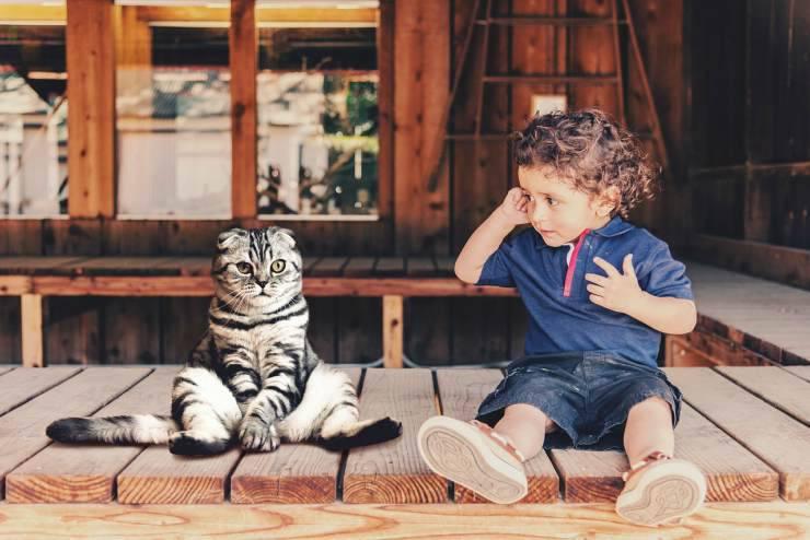Il gatto e il bimbo