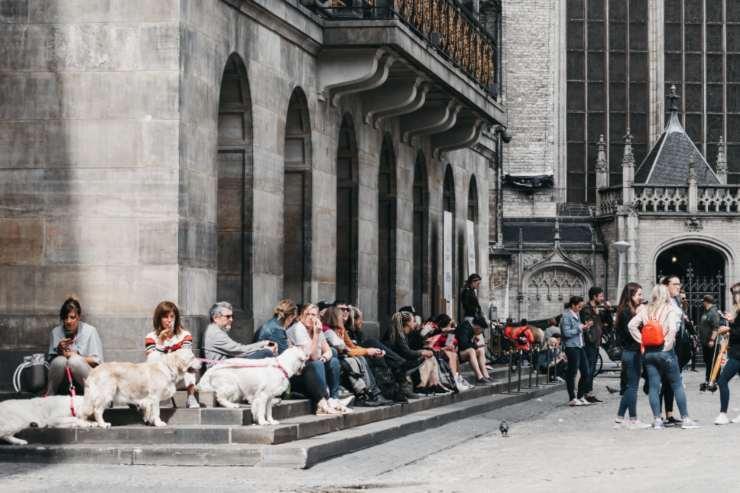 Città pet-friendly nel mondo