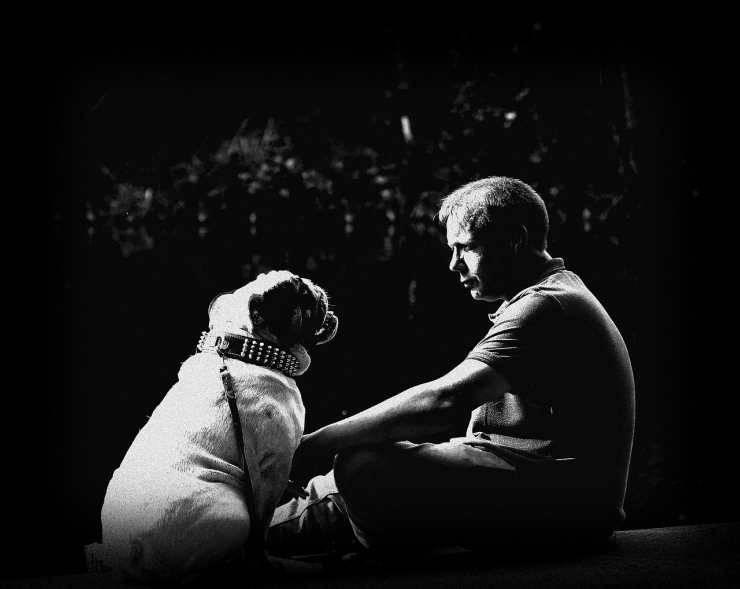 Empatia tra cane e padrone (Foto Pixabay)