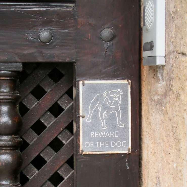 Segnale Attenti al cane