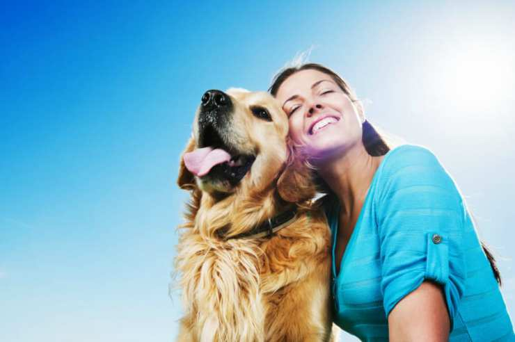 Padrone e cane felici insieme Facebook