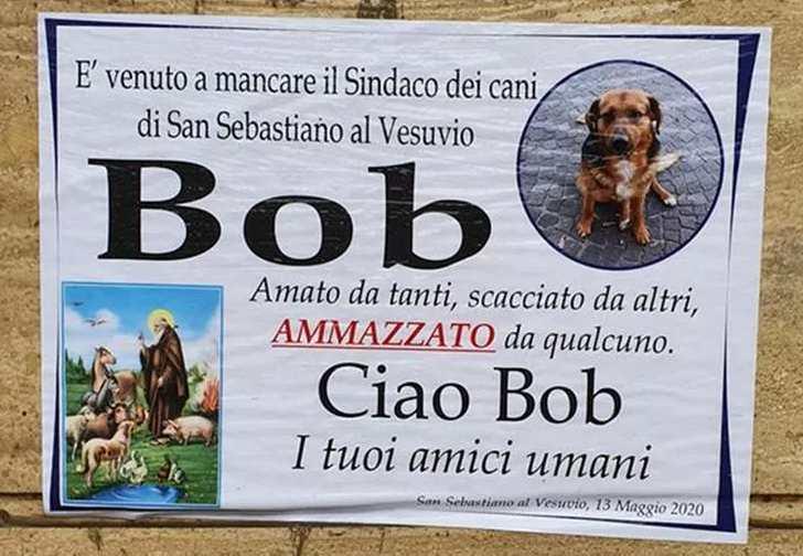 manifesto cane sindaco