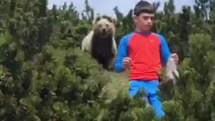 Trentino bambino orso VIDEO
