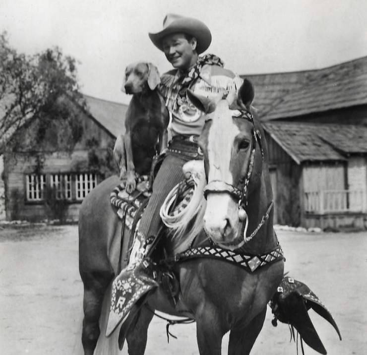 cavallo western roy rogers