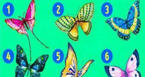 Test personalità farfalle