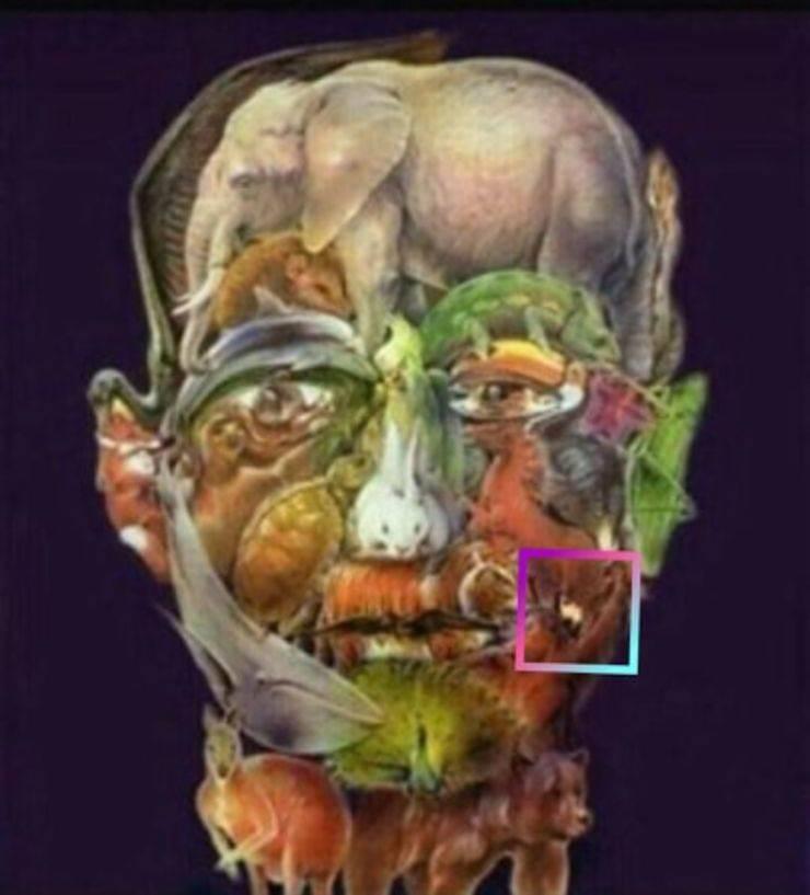 test visivo Alzheimer