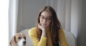 curiosità sul cane