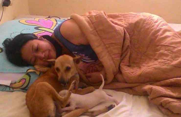 La donna dorme con i cani Facebook