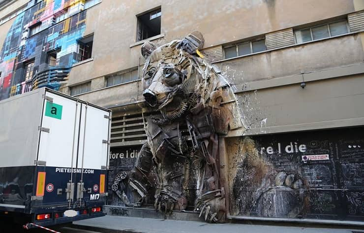 orso Bardalo II Torino