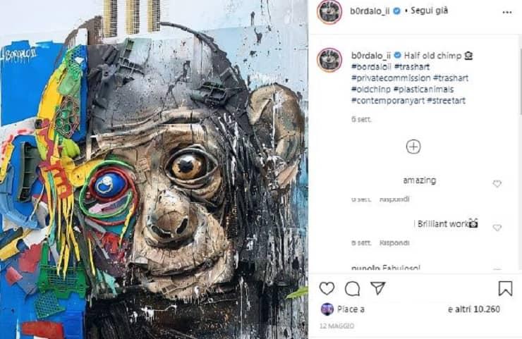 scimpanzè Bardalo II